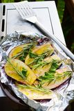 Eggplants on the grill. Image of eggplants going into the grill Stock Images