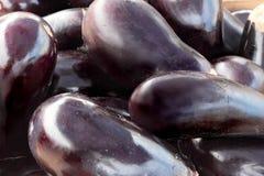 Eggplants. Heap ripe eggplant. Horizontally Royalty Free Stock Photography