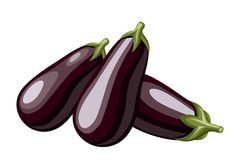 Eggplants. Stock Photography