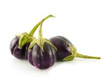Eggplants isolated on white Stock Images