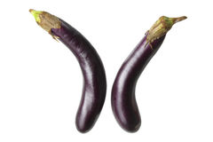 Eggplants Stock Image