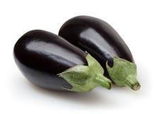 Eggplants isolated on white background Royalty Free Stock Images