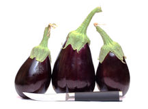 Eggplants and knife. Color photo of vegetable on a white background Royalty Free Stock Photos