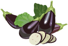 Eggplants with leaves and slices. Illustration of realistic eggplants with leaves and slices Stock Image