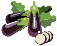 Eggplants with leaves and slices. Illustration of simplistic eggplants with leaves and slices Stock Images