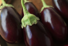 Eggplants lined up Stock Photo