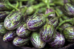 Eggplants at market Royalty Free Stock Image