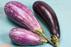 Eggplants Stock Photography