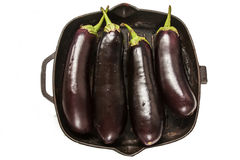 Eggplants ready for cooking Stock Image
