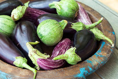 Eggplants and round zucchini Royalty Free Stock Image