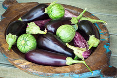 Eggplants and round zucchini Stock Photo