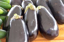 Eggplants. Shiny black eggplants for sale at the outdoor farm market stock images