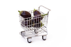 Eggplants in shopping cart. Isolated Stock Photography