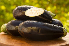 Eggplants. Some eggplants over a white wooden surface Royalty Free Stock Photography