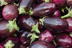 Eggplants. At the South italian Market Royalty Free Stock Photography