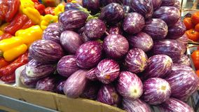 Eggplants with stripes purple. And white at the market Stock Photography