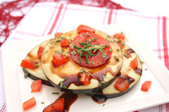 Eggplants with tomatoes Stock Images