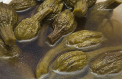 Eggplants in vinegar Stock Image
