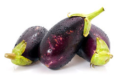 Eggplants with water drops Stock Photography