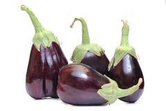 Eggplants on white Stock Photos
