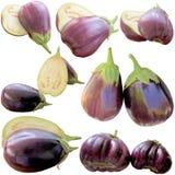 Eggplants on a white background. Royalty Free Stock Photos