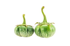 Eggplants on white background. Green eggplants on white background Stock Photos