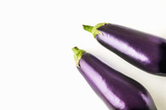 Eggplants on the white background Stock Images