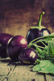 Eggplants on the wooden background Stock Photography