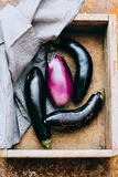 Eggplants in a wooden crate Royalty Free Stock Photo