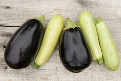 Eggplants and zucchini Stock Images