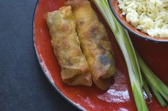 Eggrolls and rice. A Asian bowl of egg roll and rice with scallion Stock Photo