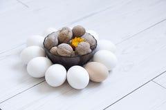 eggs гайки Стоковая Фотография RF
