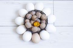 eggs гайки Стоковое Изображение