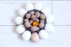 eggs гайки Стоковое Фото