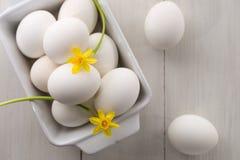 eggs жизнь все еще Стоковое Изображение
