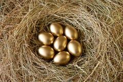 eggs золотистое гнездй стоковые изображения rf