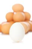 eggs много белизна Стоковое фото RF