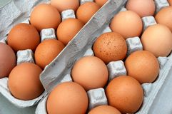 eggs органическое Стоковое Изображение