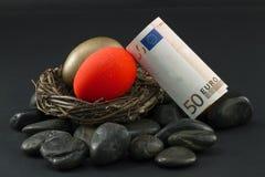 eggs побеспокоенное гнездй евро Стоковые Изображения RF