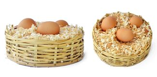 Eggs_01 Stock Image