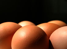 Eggs. In front of black Stock Images