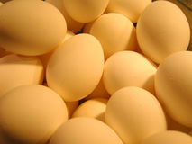 Eggs 1. Eggs in a stainless steel bowl Stock Images