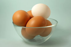 Eggs. Some brown eggs and one white egg in a bowl royalty free stock image