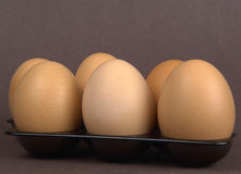Eggs. A pack of six eggs Royalty Free Stock Images