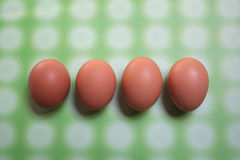 Eggs. Four eggs on green background stock photo