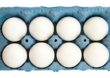 Eggs. In blue cardboard, isolated over white background Stock Image