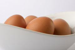 Eggs. In a white dish on white background. very clean and modern Royalty Free Stock Photos