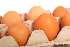 Eggs. A carton of chicken eggs on a white background Stock Images
