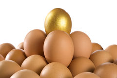 Eggs Stock Images