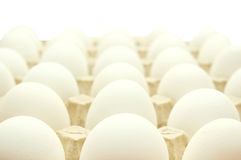 Eggs. Many white eggs lay in cells. On a white background Stock Photo